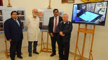 Una oportunidad para ver de cerca los detalles de la restauración del retablo de Consolación de Utrera