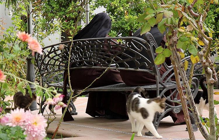 El amor a la naturaleza al otro lado de la celosía de las Madres Carmelitas de Utrera (VÍDEO)