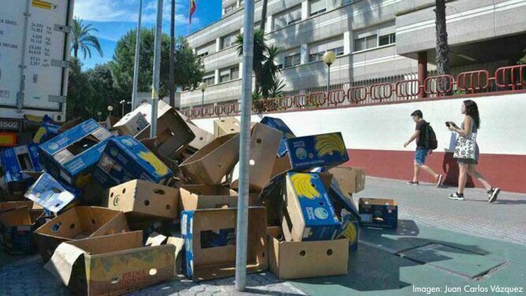 Piden más de 13 años de cárcel por esconder una tonelada de droga entre plátanos en El Palmar de Troya