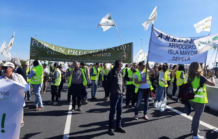 Podemos muestra su «apoyo total» a las reivindicaciones de los agricultores y ganaderos utreranos movilizados en Sevilla