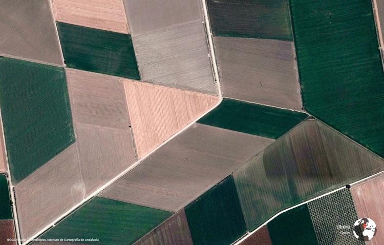 La herramienta fotográfica de Google Earth elige los campos de cultivo de Utrera como una de las imágenes de su galería