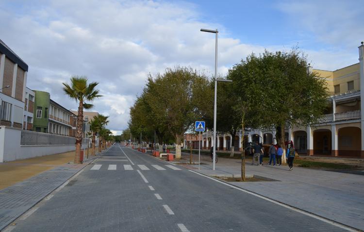 El paseo de Consolación cierra al tráfico rodado por tareas de mantenimiento del arbolado