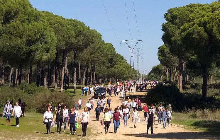 La hermandad del Rocío de Utrera organiza su decimonoveno «Camino de mujeres»