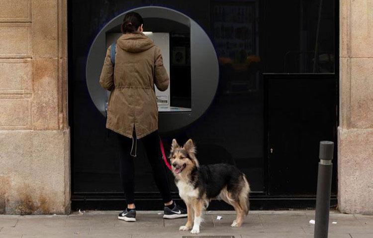El Ayuntamiento de Utrera limita los paseos con perros y reduce aún más el servicio de autobús urbano