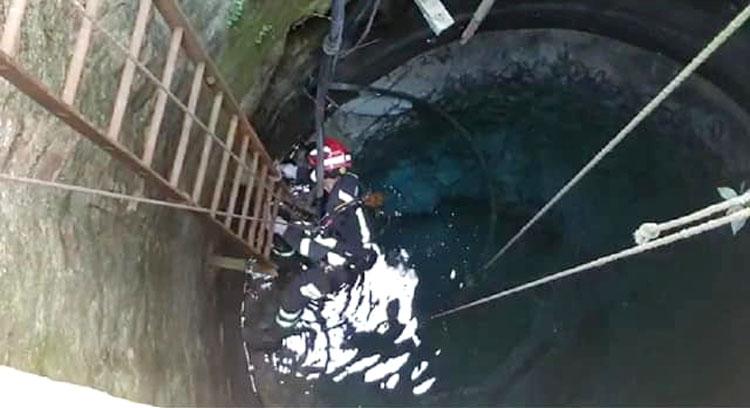 Los Bomberos de Utrera tienen que acudir al rescate de un gato que cayó accidentalmente a un pozo