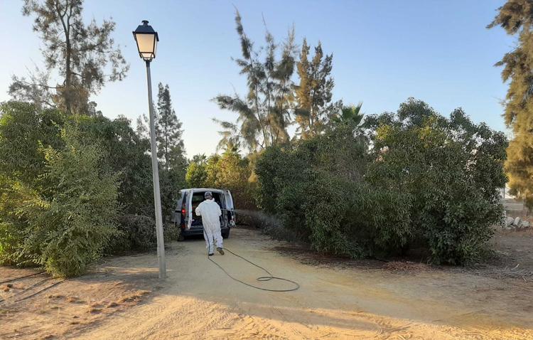 Detectan en la pedanía utrerana de Pinzón un caso del «Virus del Nilo»