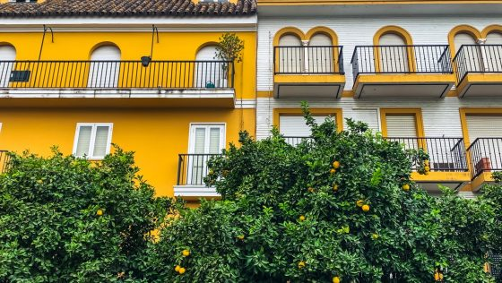 ¿Te has planteado vivir en Sevilla?