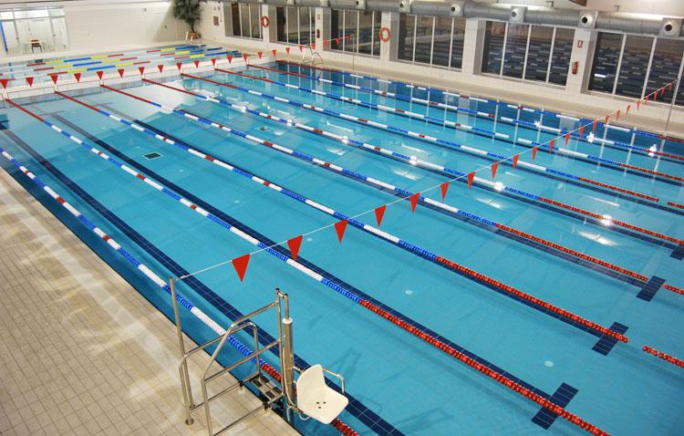 «Estamos analizando diferentes posibilidades para facilitar el entrenamiento de los deportistas en la piscina de Vistalegre»