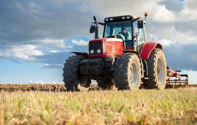 Ciudadanos propone crear en Utrera un plan integral y estratégico para reforzar el sector agrícola