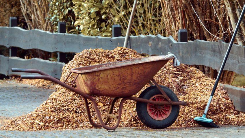 Herramientas indispensables si te gusta la jardinería
