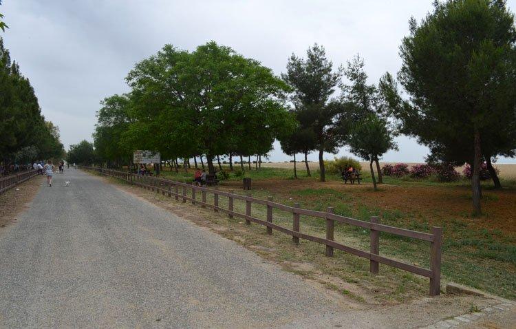 Utrera inicia el diseño de su «nuevo» parque periurbano de Vistalegre