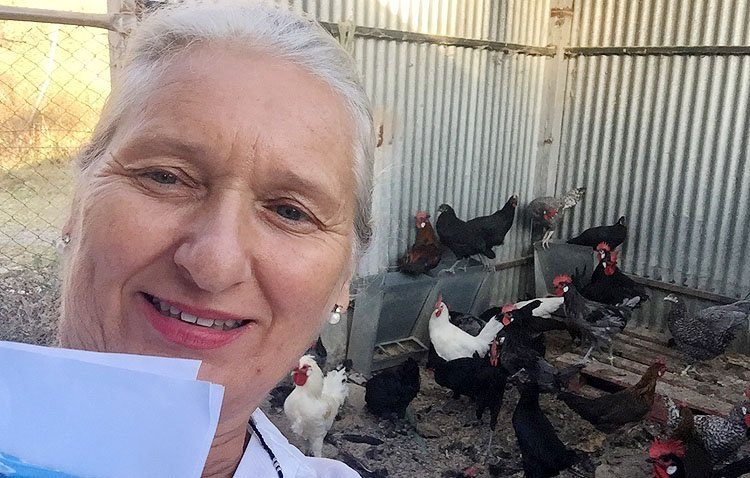 Un estudio encumbra a los huevos de las gallinas utreranas por sus «beneficios fisiológicos» en la salud humana