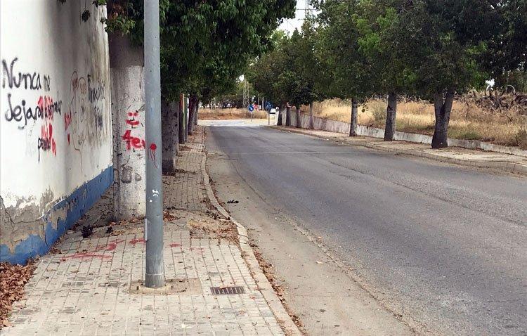 Vox pide al Ayuntamiento de Utrera el arreglo del acerado de la avenida de entrada al Junquillo