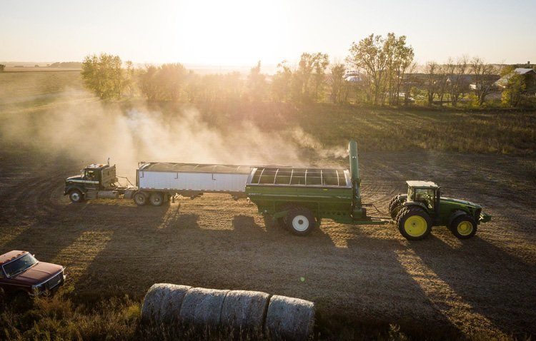 Un nuevo proyecto empresarial se desarrollará en la carretera de Arahal para la fabricación y distribución de compost