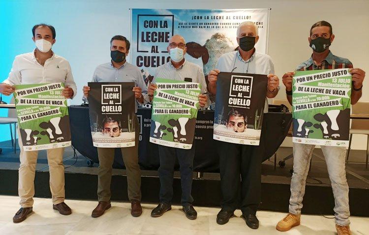 El sector vacuno de leche de Utrera se suma a las movilizaciones ante la «grave crisis» de precios que sufre