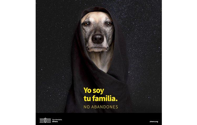 'Yo soy tu familia. No abandones', una campaña para prevenir el abandono de animales de compañía y fomentar las adopciones
