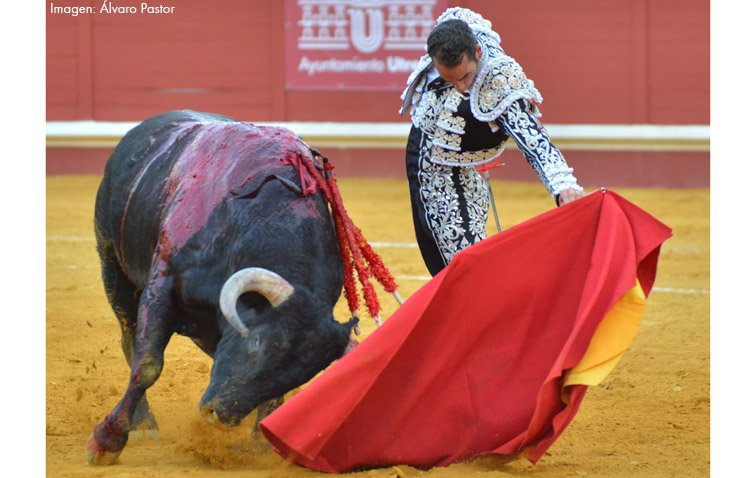 El toro, esa otra emoción